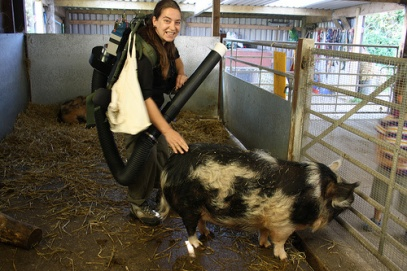 me-and-pig